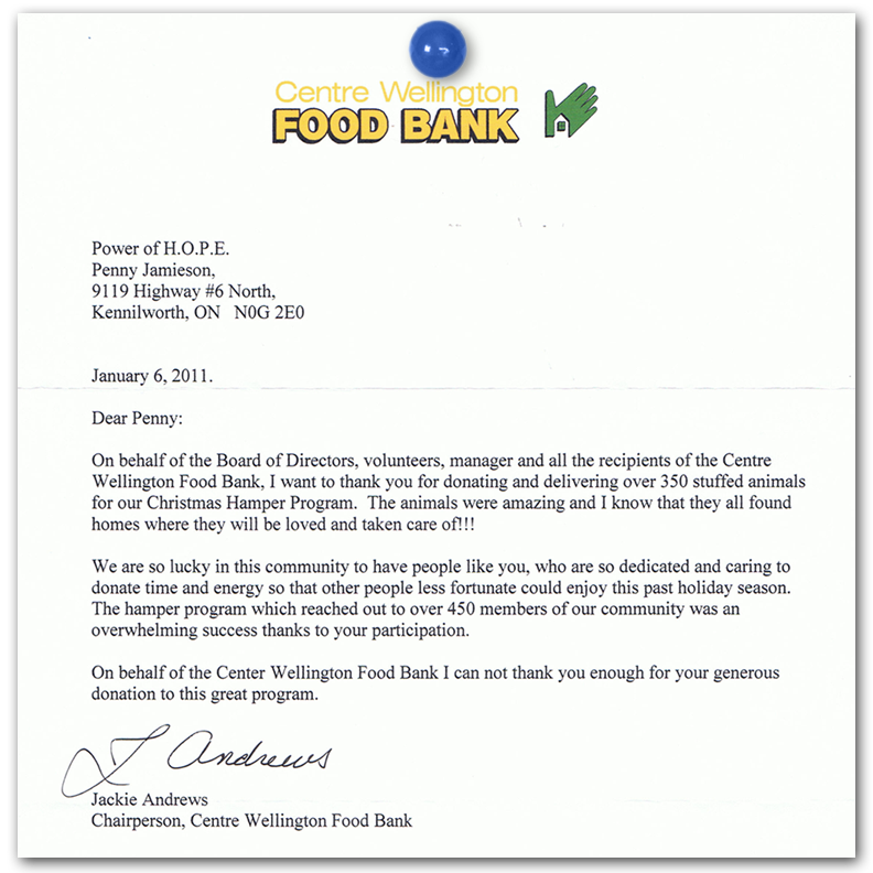 sample thank you letter for donation to food bank sample sponsor thank you letter 15 download